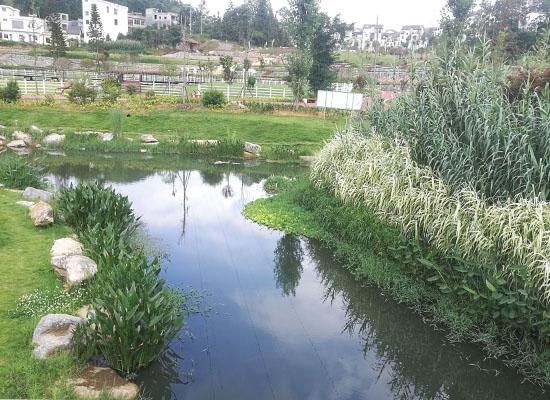 黔西南州兴仁县城南河道改造工程案例