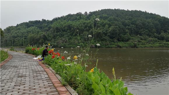 鲤鱼坝公园工程案例